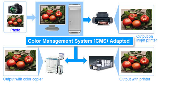 CMS Images