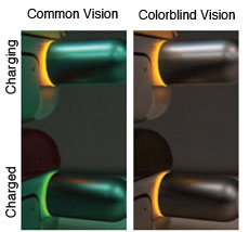 common vision and colorblind vision