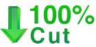 100_CUT.jpg